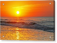 Golden Glory Acrylic Print