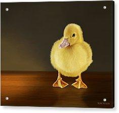 Golden Glow Acrylic Print by Bob Nolin