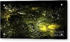 Golden Glow Acrylic Print by Tatsuya Atarashi