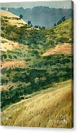 Golden Hills Acrylic Print by Donald Maier