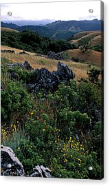 Golden Hills Of Summer Acrylic Print by Kathy Yates