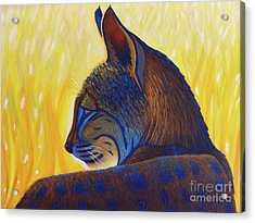 Golden Hour Bobcat Acrylic Print