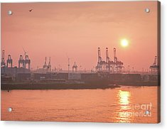 Golden Hour On The Elbe Acrylic Print