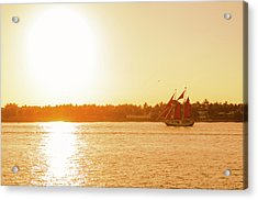 Golden Hour Sailing Ship Acrylic Print