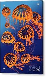 Golden Jellyfish Dance Acrylic Print