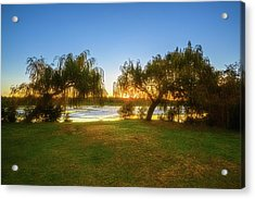 Acrylic Print featuring the photograph Golden Lake, Yanchep National Park by Dave Catley