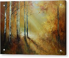 Golden Light In Autumn Woods Acrylic Print
