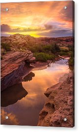 Golden Light In Moab Acrylic Print by Darren  White