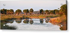 Golden Light On The St. Marks Marshes Acrylic Print