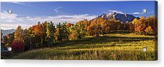Golden Meadow Acrylic Print by Chad Dutson