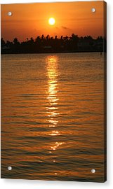 Acrylic Print featuring the photograph Golden Moment by Diane Merkle