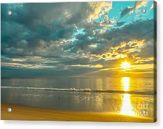 Golden Morning Acrylic Print