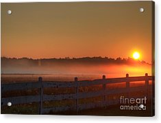 Golden Morning Acrylic Print by Robert Pearson