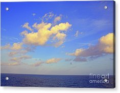 Golden Opportunity Acrylic Print by Robyn King