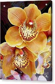 Golden Orchid Acrylic Print