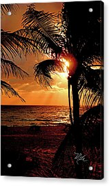 Golden Palm Sunrise Acrylic Print