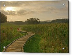Golden Pathway To A Foggy Sun Acrylic Print by Angelo Marcialis