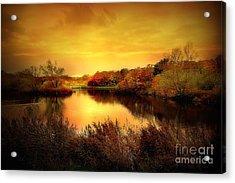 Golden Pond Acrylic Print by Jacky Gerritsen