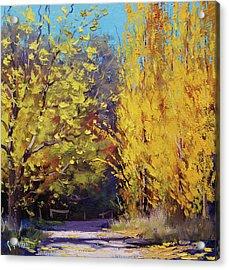 Golden Poplars Acrylic Print