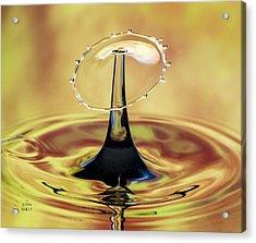 Golden Raindrop Acrylic Print by John Bailey