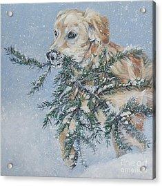 Golden Retriever Christmas Greens Acrylic Print by Lee Ann Shepard