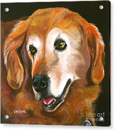 Golden Retriever Fur Child Acrylic Print by Susan A Becker