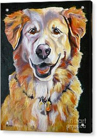 Golden Retriever Most Huggable Acrylic Print by Susan A Becker
