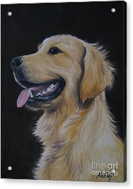 Golden Retriever Nr. 3 Acrylic Print