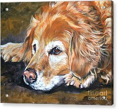 Golden Retriever Senior Acrylic Print by Lee Ann Shepard