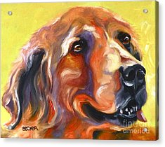 Golden Retriever The Shadow Of Your Smile Acrylic Print by Susan A Becker