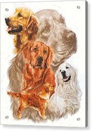 Golden Retriever W/ghost Acrylic Print by Barbara Keith