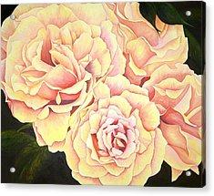 Golden Roses Acrylic Print by Rowena Finn