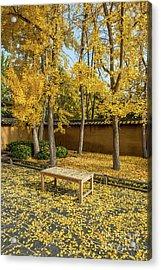 Golden Seat Acrylic Print by Jamie Pham