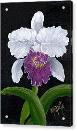 Golden Star Orchid Acrylic Print by Marveta Foutch