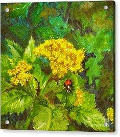 Golden Summer Blooms Acrylic Print