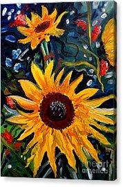 Golden Sunflower Burst Acrylic Print