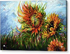 Golden Sunflowers - Harsh Malik Acrylic Print
