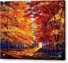 Golden Sunlight Acrylic Print by David Lloyd Glover