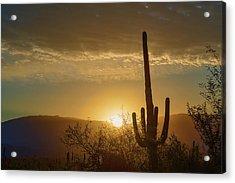 Acrylic Print featuring the photograph Golden Sunrise by Dan McManus