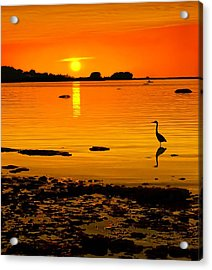 Golden Sunset At The Bay Acrylic Print