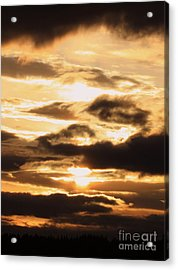 Golden Sunset Acrylic Print by Carol Groenen