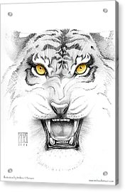 Golden Tiger Eyes Acrylic Print by Melissa A Benson