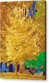Acrylic Print featuring the photograph Golden Tree by Donna Bentley