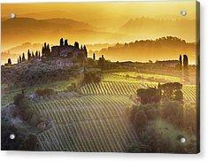 Golden Tuscany Acrylic Print