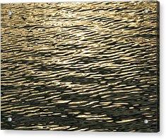 Golden Wave Acrylic Print