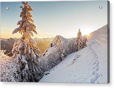 Golden Winter Acrylic Print by Evgeni Dinev