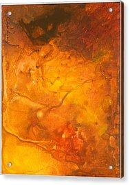 Goldenglow Acrylic Print