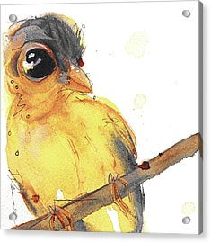 Acrylic Print featuring the painting Goldfinch by Dawn Derman