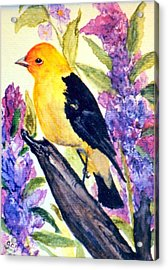 Acrylic Print featuring the painting Goldfinch by Gail Kirtz