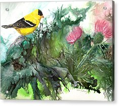 Acrylic Print featuring the painting Goldfinch by Sherry Shipley